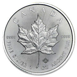Moneda de Plata Maple Leaf 1 onza - Monsterbox de 500 - 2016 - Royal Canadian Mint