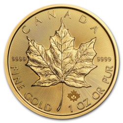 1 ounce Gold Maple Leaf - Roll of 10 - 2019 - Royal Canadian Mint